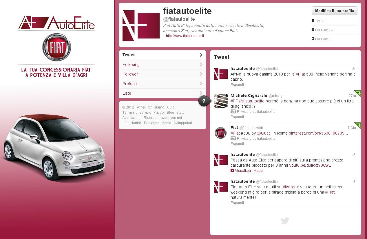 Web Marketing per Fiat Auto Elite